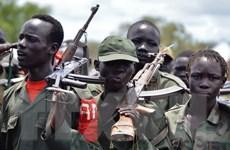 Nam Sudan: Phiến quân bắt cóc 12 nhân viên gìn giữ hòa bình LHQ