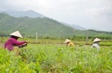 Hợp tác ASEM cần gắn kết chặt với các Mục tiêu phát triển bền vững