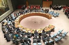 Hội đồng Bảo an thông qua nghị quyết về cuộc chiến chống IS