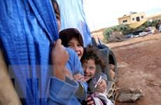 12.000 người tị nạn Syria đang mắc kẹt tại biên giới Jordan