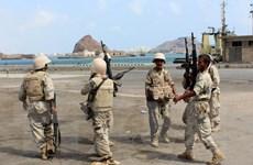 Yemen: Thị trưởng Aden thoát chết trong một vụ tấn công