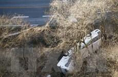 Nhật Bản thanh tra công ty xe buýt sau vụ tai nạn làm 14 người chết