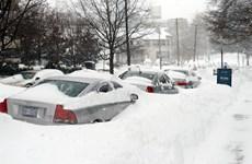 Mỹ nỗ lực khắc phục hậu quả của siêu bão tuyết Snowzilla