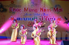 Đại sứ quán Việt Nam tại Lào và Ai Cập tổ chức tiệc đón Xuân