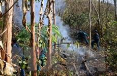 Hai vụ cháy liên tiếp tại Lào Cai thiêu rụi hàng chục ha rừng
