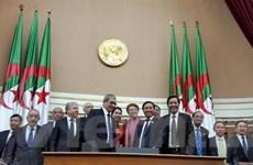 Tăng cường quan hệ hữu nghị truyền thống Việt Nam-Algeria