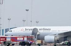Sân bay Zaventem chính thức hoạt động trở lại từ ngày 3/4