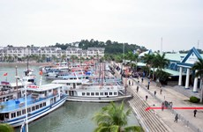 Xử lý vụ 3 du khách ngoại bị ăn chặn tiền tour tại Hà Nội