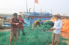 Thủ tướng yêu cầu hỗ trợ ngư dân trong vụ cá chết bất thường