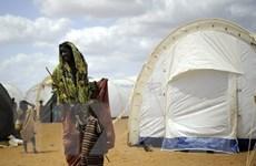 Kenya sẽ đóng cửa trại tị nạn lớn nhất thế giới Dadaab