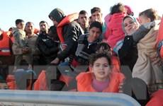Italy giải cứu số lượng người tị nạn Syria đông nhất kể từ đầu năm