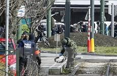 Loạt vụ tấn công tại Brussels: Bỉ bắt giữ thêm nghi can