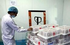 Trung tâm Chiếu xạ Hà Nội chiếu xạ lô vải xuất khẩu đầu tiên