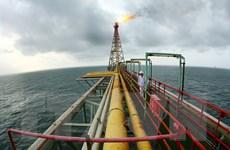Việt Nam đẩy mạnh khoan giếng mới để gia tăng sản lượng dầu thô