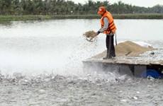 """Làm rõ phản ánh """"kiểm định khống"""" hơn 800 sản phẩm thức ăn thủy sản"""