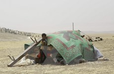 Lực lượng Syria được Mỹ hậu thuẫn đánh bật quân IS ở Manbij