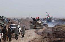Iraq chặn đứng hai vụ tấn công liều chết tại thành phố Kirkuk