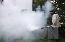 Giới khoa học định ngày công bố vắcxin chống virus Zika