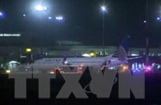 Máy bay chở 207 khách hạ cánh khẩn cấp, 12 người nhập viện