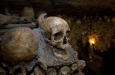 Hầm mộ Paris: Thế giới ngầm tối tăm và bí ẩn dưới lòng đất