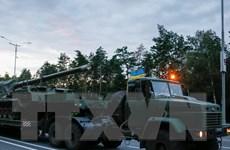 Lực lượng đòi độc lập ở Donbass tuyên bố ngừng bắn đơn phương