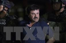 """Mexico sớm quyết định việc dẫn độ trùm ma túy """"El Chapo"""" sang Mỹ"""