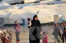 """IS đã """"giữ chân"""" khoảng 1,5 triệu người dân Iraq tại Mosul"""