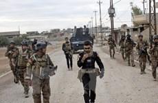 """Nga tố cáo chiến dịch tại Mosul là """"cuộc thảm sát thời trung cổ"""""""