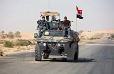 IS phản kích ác liệt tại Mosul, thường dân bị tấn công đẫm máu