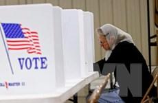 Mỹ: Tỷ lệ cử tri chờ đến phút cuối mới bỏ phiếu tăng so với 2012