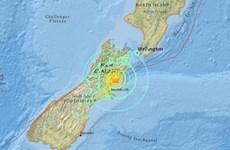 Sóng thần xuất hiện tại biển New Zealand sau trận động đất