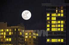 """Sự kiện quốc tế 14-20/11: Siêu trăng """"ma mị"""" lớn nhất trong 70 năm"""