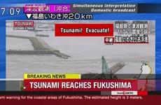 Sóng thần cao hơn 1m xuất hiện ở Nhật Bản, nhiều người đã bị thương