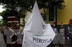 Tổ chức Mercosur đình chỉ tư cách thành viên của Venezuela