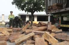 Thanh Hóa: Bắt giữ xe container chở gỗ lậu với số lượng lớn