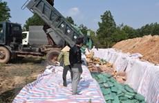 Quảng Bình tiêu hủy trên 606 tấn hải sản không đảm bảo an toàn