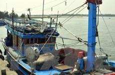 Cứu sống một ngư dân nước ngoài trôi dạt trên biển nhiều ngày