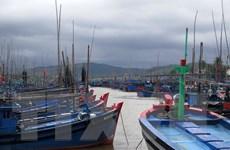 Áp thấp nhiệt đới gần bờ, trạm đảo Phú Quý đã có gió giật cấp 7