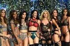 Bí mật sau vẻ đẹp không tì vết của các thiên thần Victoria's Secret