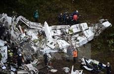Phi công trong vụ máy bay rơi tại Colombia chưa được đào tạo đầy đủ