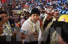 Tổng thống Bolivia ra tranh cử, thách thức kết quả trưng cầu ý dân