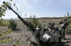 Quân đội Ukraine sẵn sàng thực hiện ngừng bắn tại Donbass