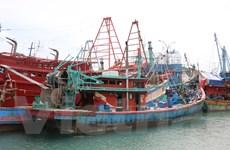 Indonesia bắt 83 tàu cá Việt Nam đánh bắt bất hợp pháp trong năm 2016