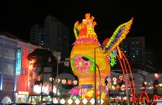 Đắm mình trong không gian lễ hội đón Năm Mới Đinh Dậu tại Singapore