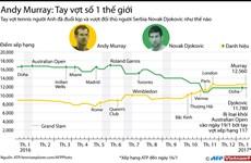 [Infographics] Andy Murray xứng đáng vị trí tay vợt số 1 thế giới
