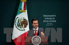 """Mexico áp dụng """"không đối đầu và không khuất phục"""" với Mỹ"""