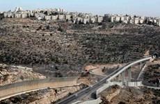 Tòa án Israel phạt tù hai người Palestine bị kết tội liên quan đến IS