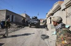 Lực lượng an ninh Iraq giải phóng thành công sân bay Mosul
