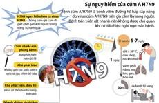 [Infographics] Sự nguy hiểm của virus cúm gia cầm A/H7N9