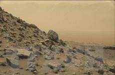 Con người có thể trồng thành công khoai tây trên Sao Hỏa